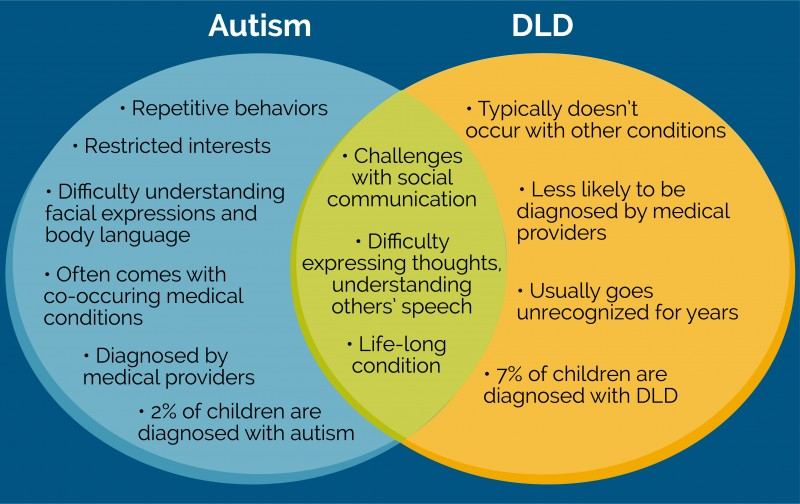 Differences between autism and DLD diagram